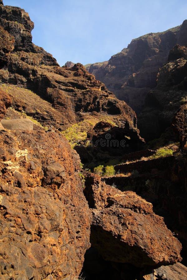 Jar Masca przy Tenerife zdjęcie royalty free