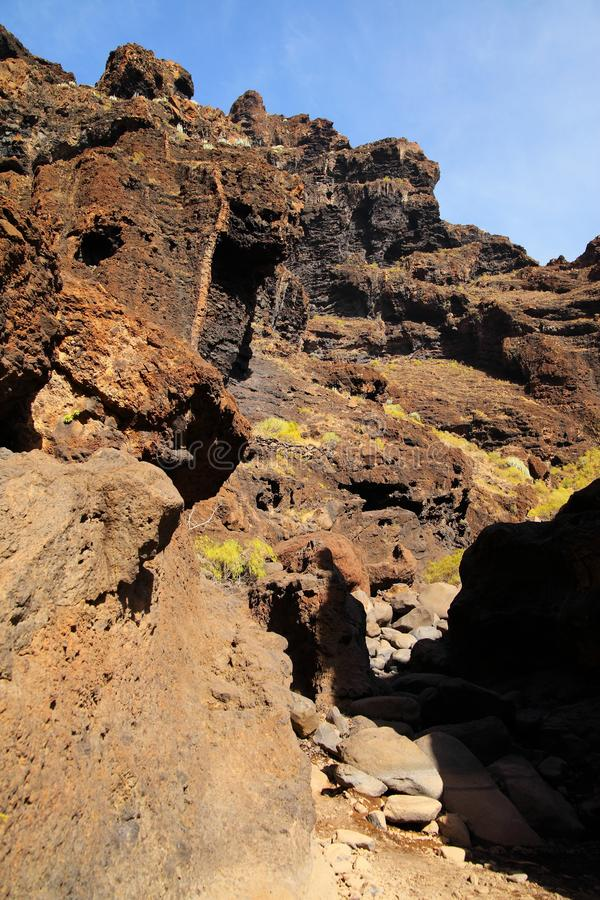 Jar Masca przy Tenerife fotografia stock