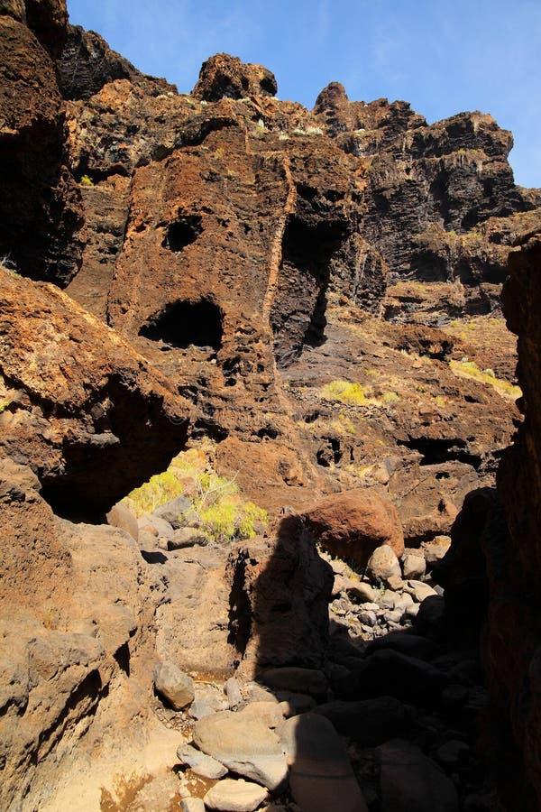 Jar Masca przy Tenerife fotografia royalty free