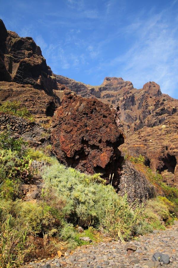 Jar Masca przy Tenerife zdjęcia royalty free