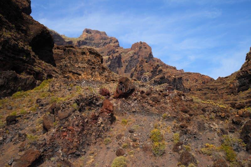 Jar Masca przy Tenerife obrazy royalty free