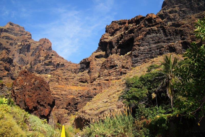 Jar Masca przy Tenerife zdjęcia stock