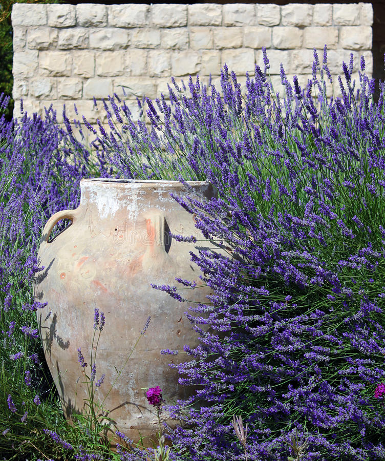 Jar, Stonewall, and Lavender royalty free stock photo