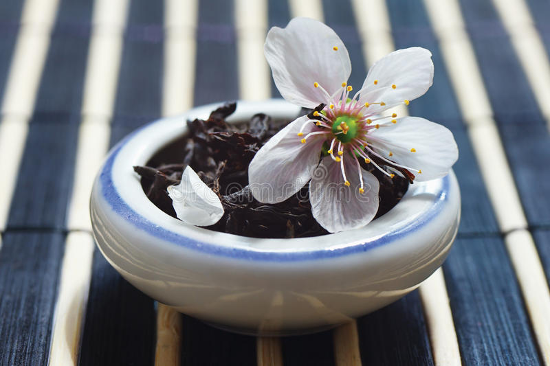 Jar of tea leaves and cherry blossoms royalty free stock photography