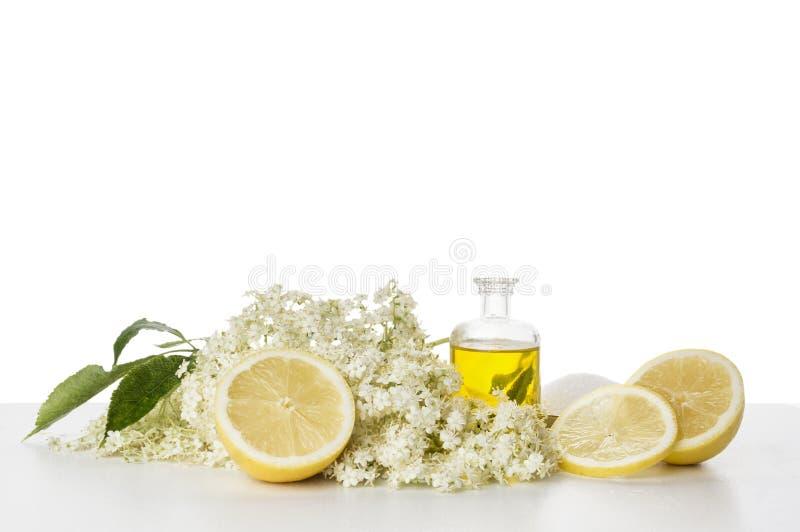 Jarabe, preparación e ingredientes de Elderflower, aislados imagen de archivo