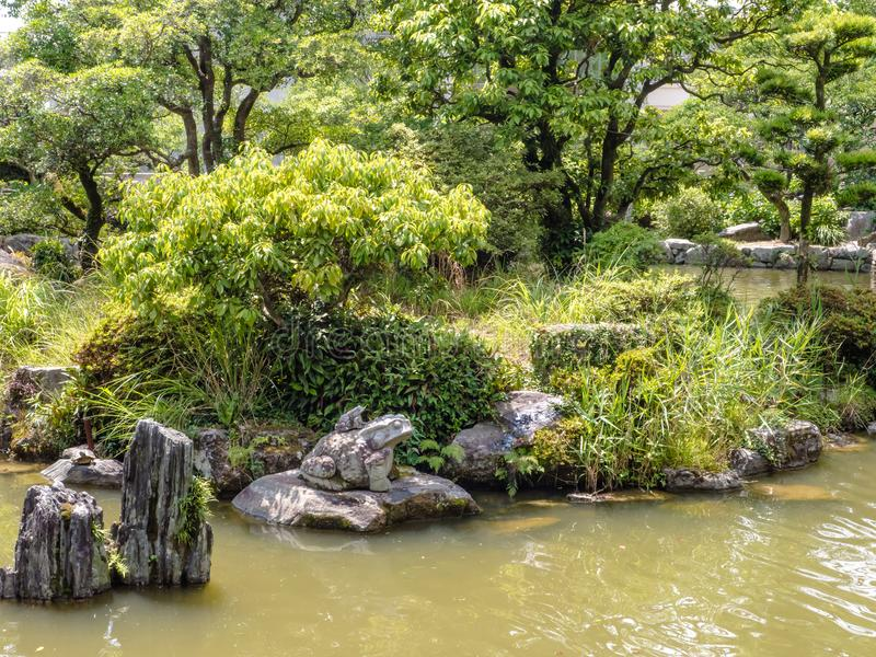 Jardín acuático con plantado fotos de archivo libres de regalías