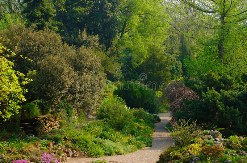 Jardín alpestre, DES Plantes, París de Jardin foto de archivo libre de regalías