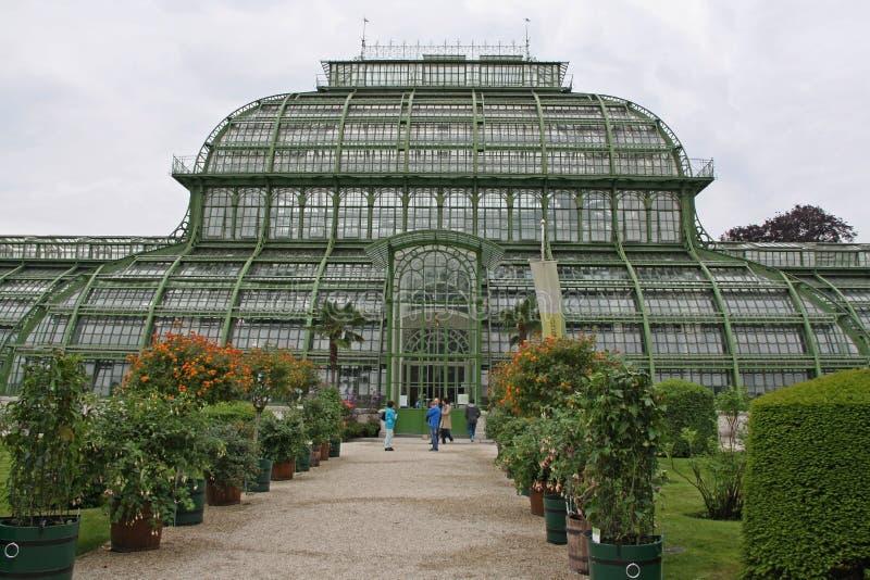 Jardín botánico cerca del palacio de Schonbrunn en Viena imagen de archivo