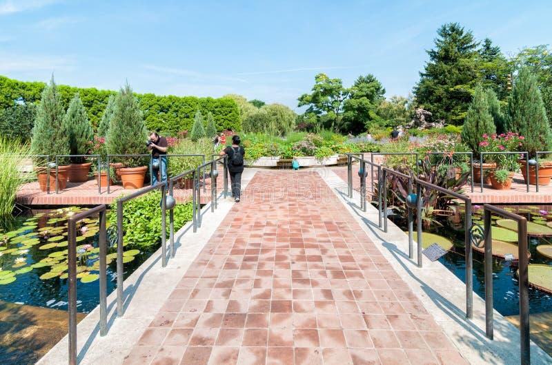 Jardín botánico de Chicago foto de archivo
