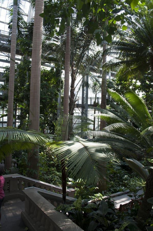Jardín botánico de Estados Unidos imagen de archivo