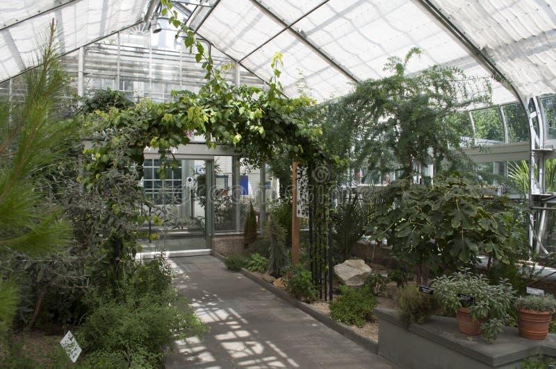 Jardín botánico de Estados Unidos foto de archivo libre de regalías