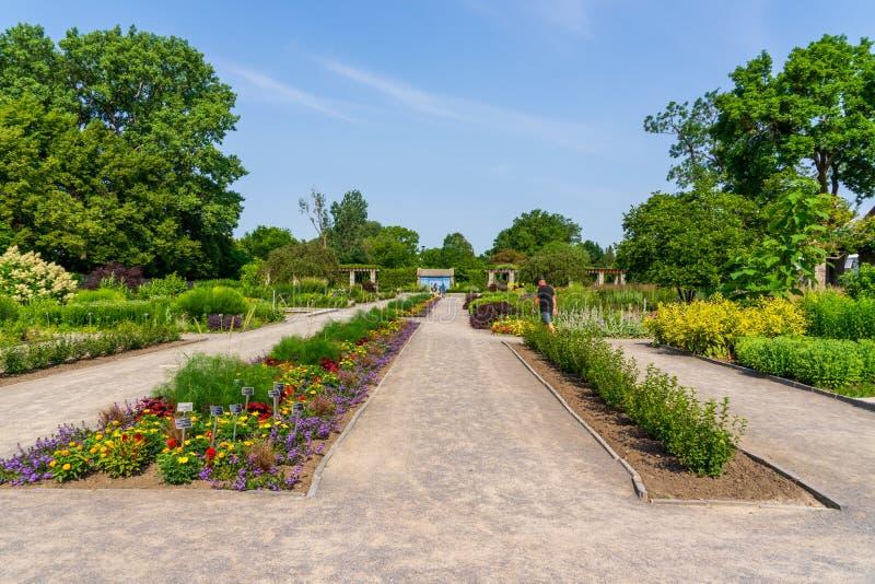 Jardín botánico de Montreal en julio imagen de archivo