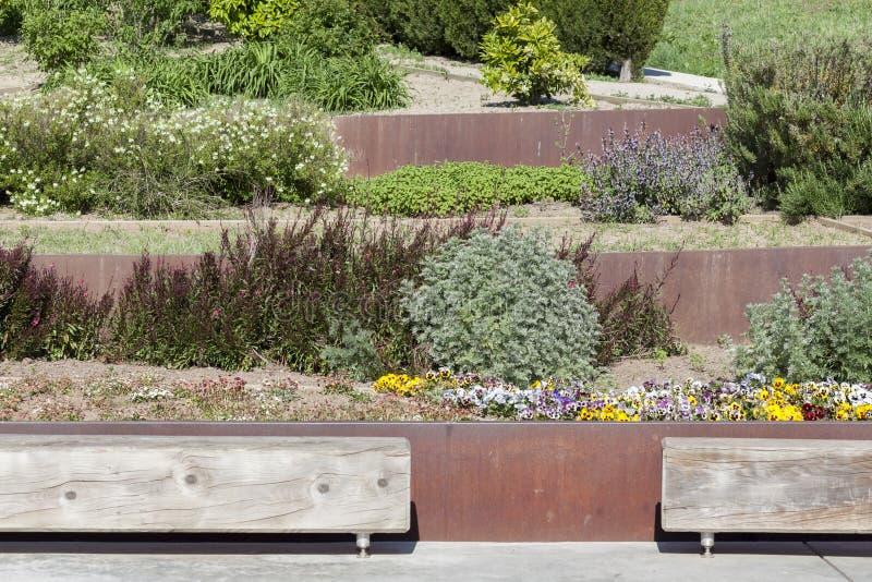 Jardín botánico en el parque de Montjuic, Barcelona imagen de archivo