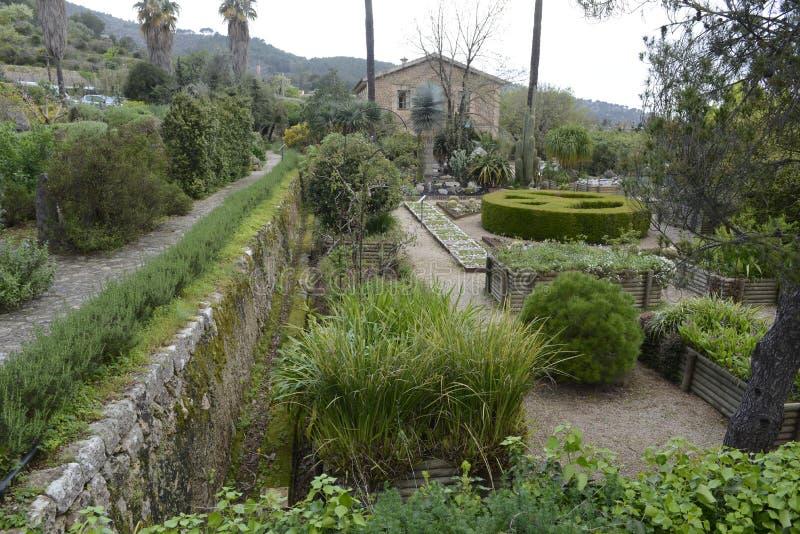 Jardín botánico en Mallorca fotografía de archivo