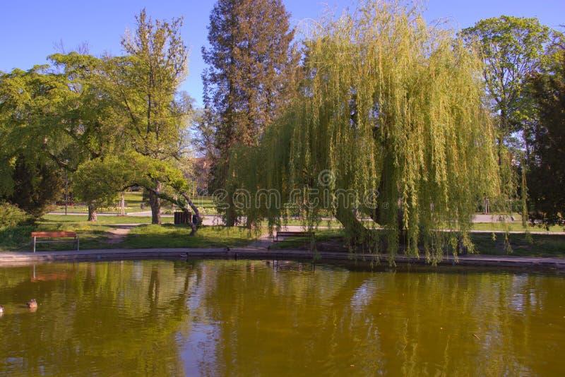 Jardín botánico en Olomouc Rep?blica Checa imagenes de archivo