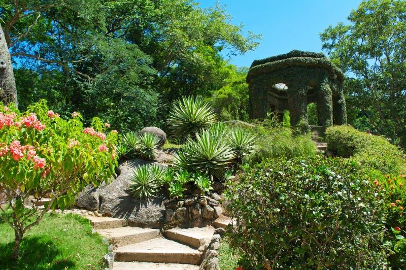 Jardín botánico en Rio de Janeiro imagenes de archivo