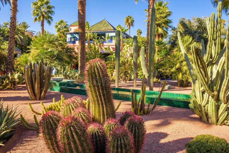 Jardín botánico Jardin Majorelle en Marrakesh fotos de archivo