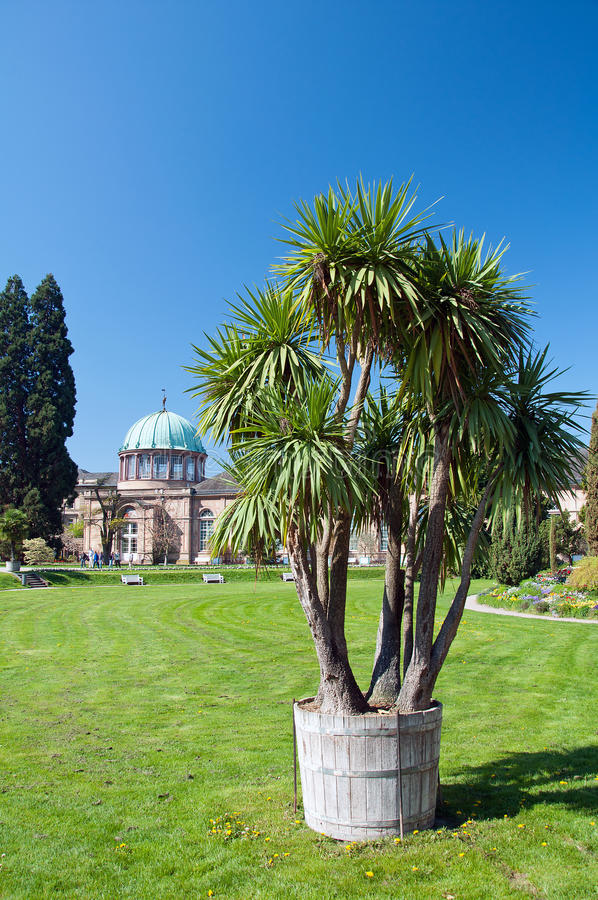 Jardín botánico municipal foto de archivo libre de regalías