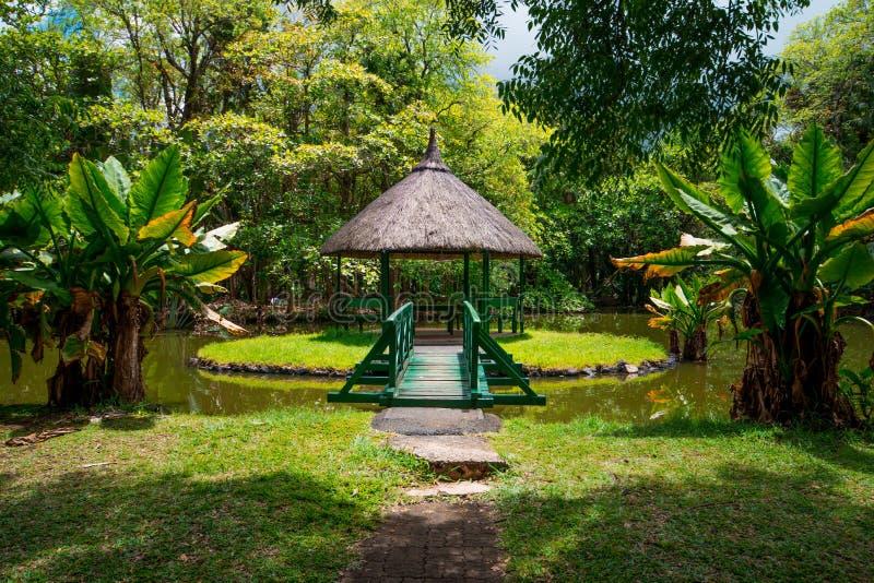 Jardín botánico Pamplemousses, Mauricio fotografía de archivo libre de regalías