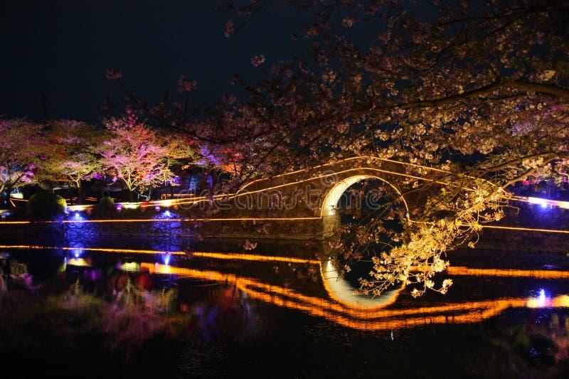 Jardín chino fotos de archivo libres de regalías