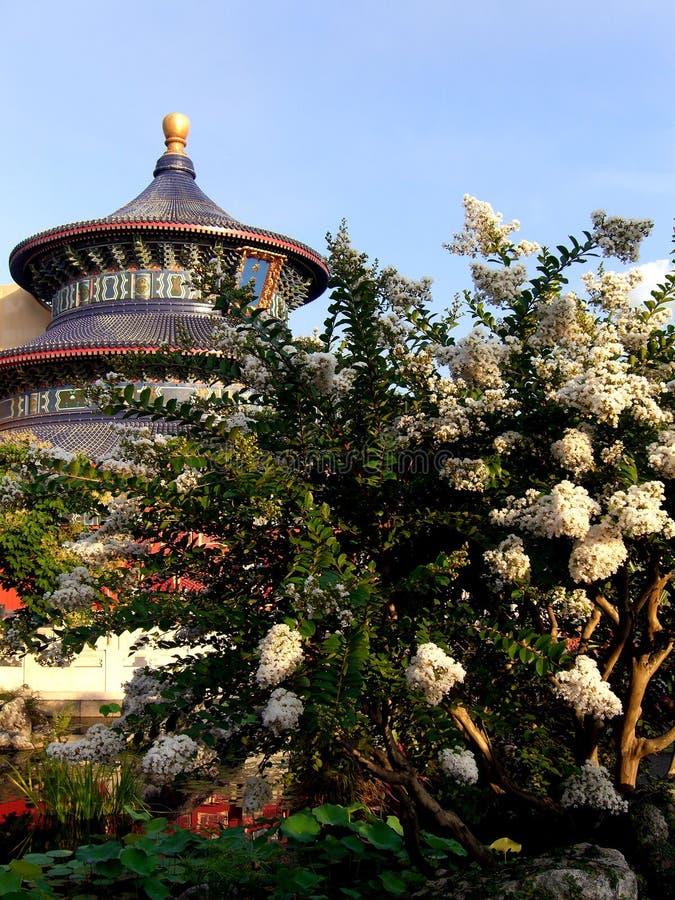 Jardín chino fotos de archivo