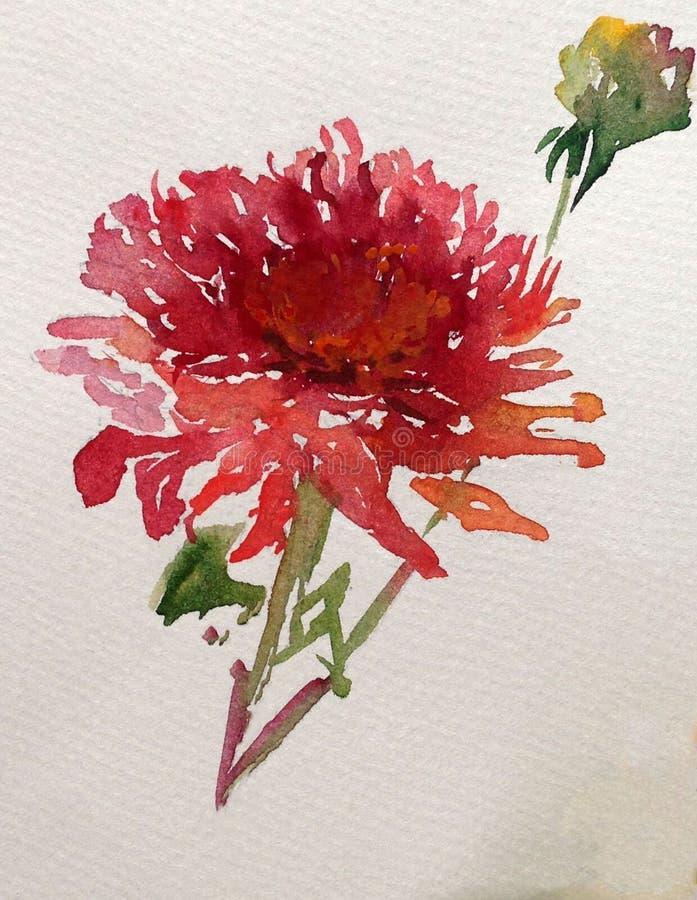 Jardín colorido de la dalia de la flor del fondo del arte de la acuarela fotografía de archivo