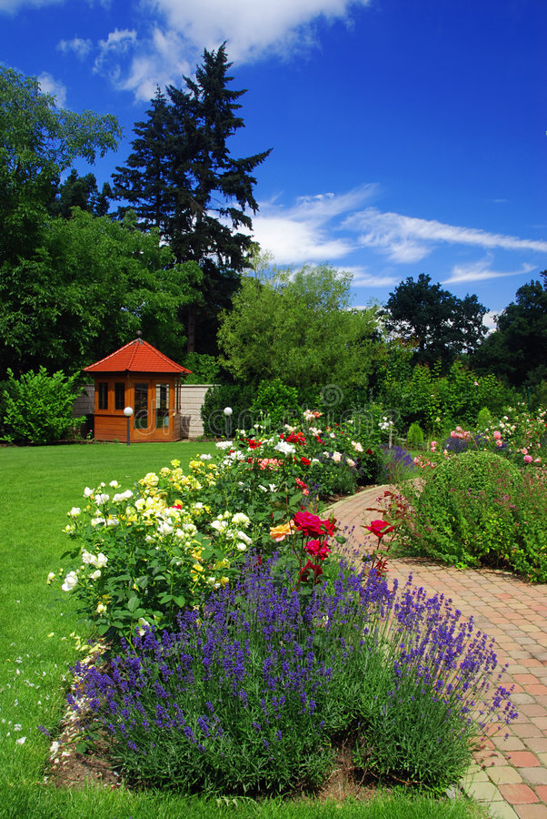 Jardín con las rosas fotografía de archivo libre de regalías
