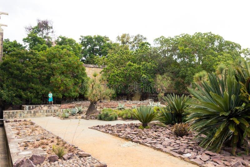 Jardín de Ethnobotanic en Oaxaca México fotos de archivo