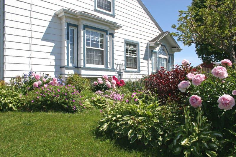 Jardín de flor 1 foto de archivo libre de regalías