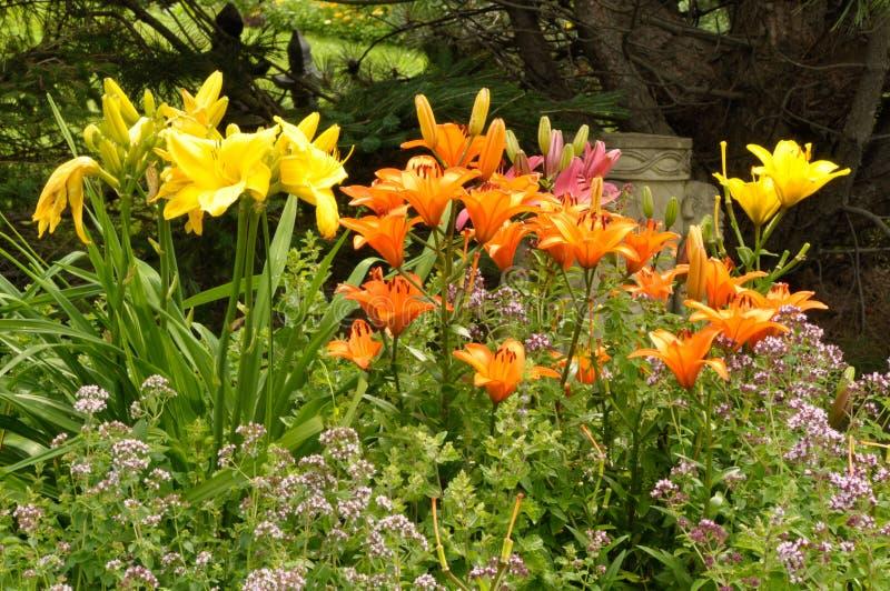Jardín de flores colorido con la estatua de Budha fotografía de archivo libre de regalías