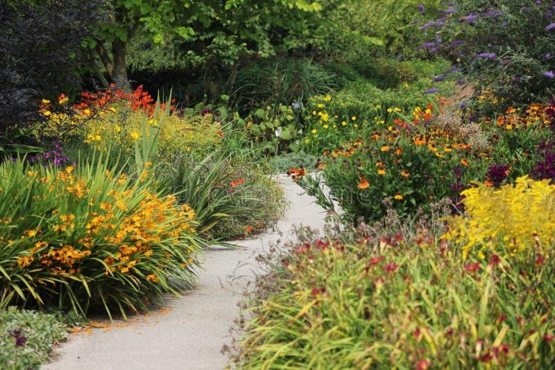 Jardín de flores con la trayectoria imagen de archivo