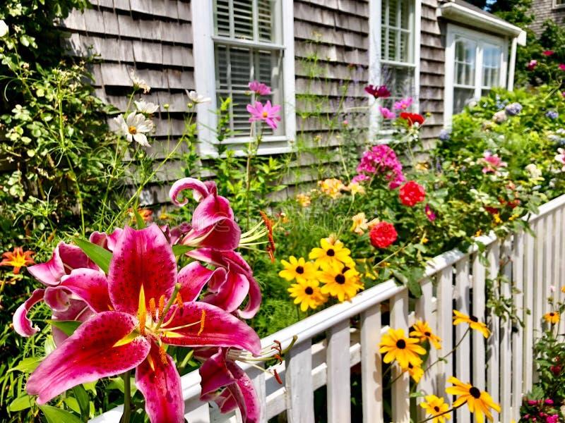 Jardín de flores en Nantucket fotos de archivo libres de regalías