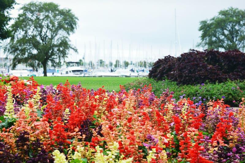 Jardín de flores, parque de Eichelman, Kenosha, Wisconsin fotos de archivo