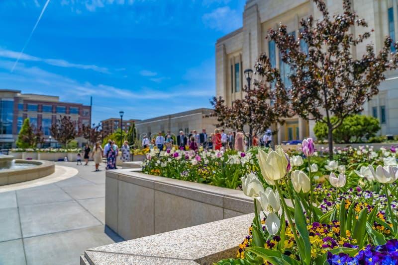 Jardín de flores y fuente coloridos fuera de un edificio magnífico contra el cielo azul fotos de archivo