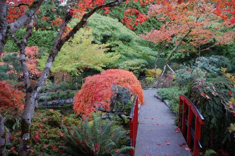 Jardín de Janpanese fotografía de archivo libre de regalías