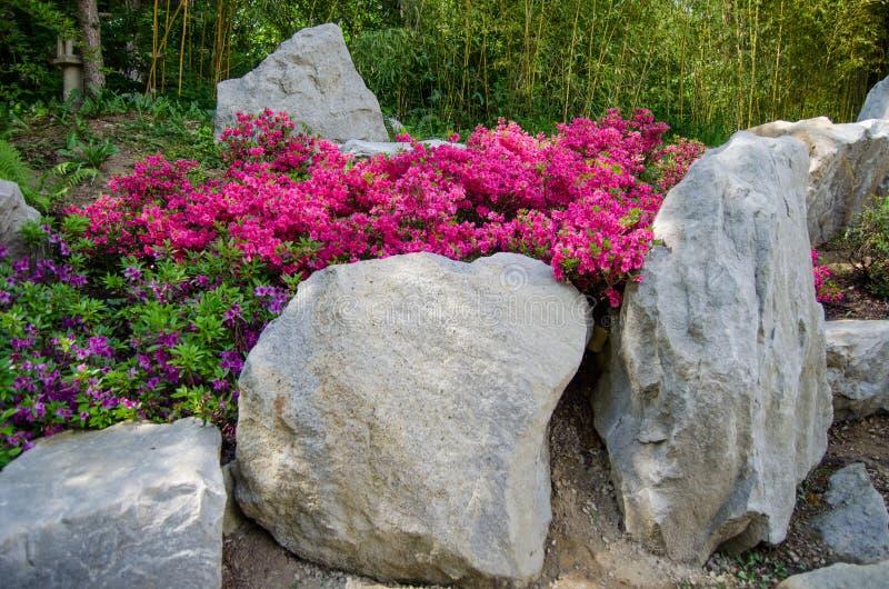 Jardín de Japón imagen de archivo