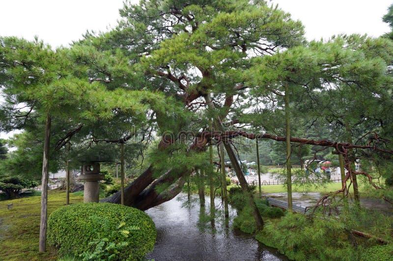 Jardín de Kanazawa fotografía de archivo libre de regalías