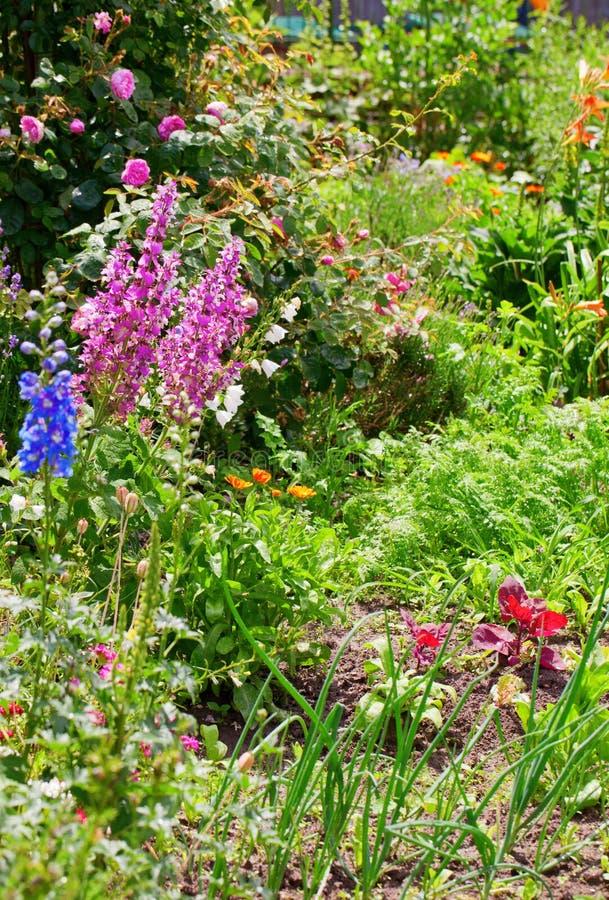 Jardín de la cabaña fotografía de archivo