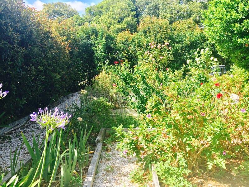 Jardín de la cabaña del país fotografía de archivo libre de regalías