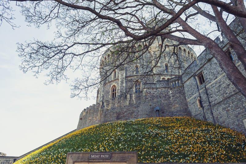 Jardín de la fosa en la torre de Edward III en Windsor Castle, un palacio real de la residencia y la atracción turística importan fotografía de archivo
