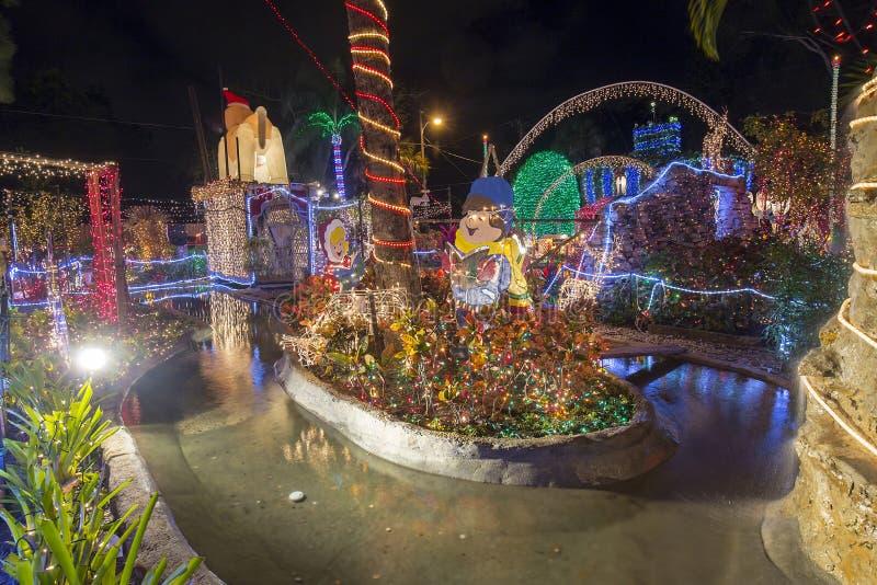 Jardín de la Navidad imagen de archivo