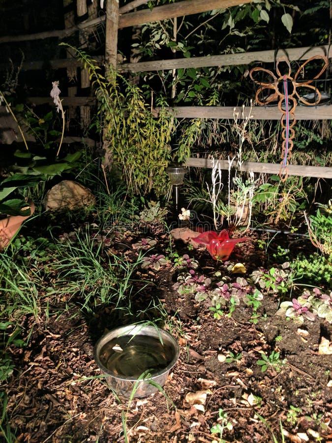 Jardín de la noche fotos de archivo libres de regalías
