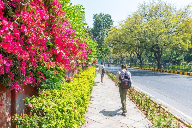 Jardín de Lodhi, Nueva Deli, la India, el 30 de marzo de 2019 - jardín de Beautuful Lodhi con las flores, el invernadero, las tum fotos de archivo libres de regalías