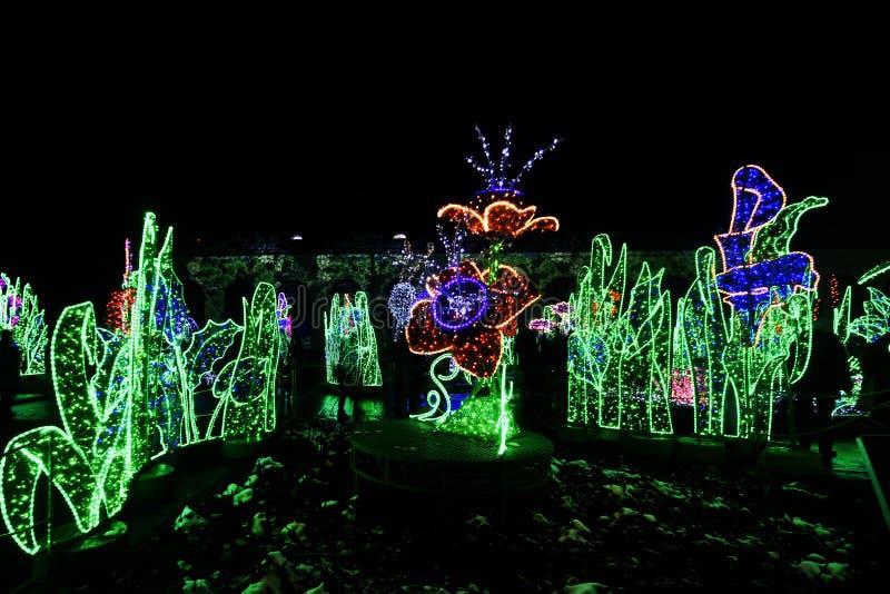 Jardín de luces foto de archivo
