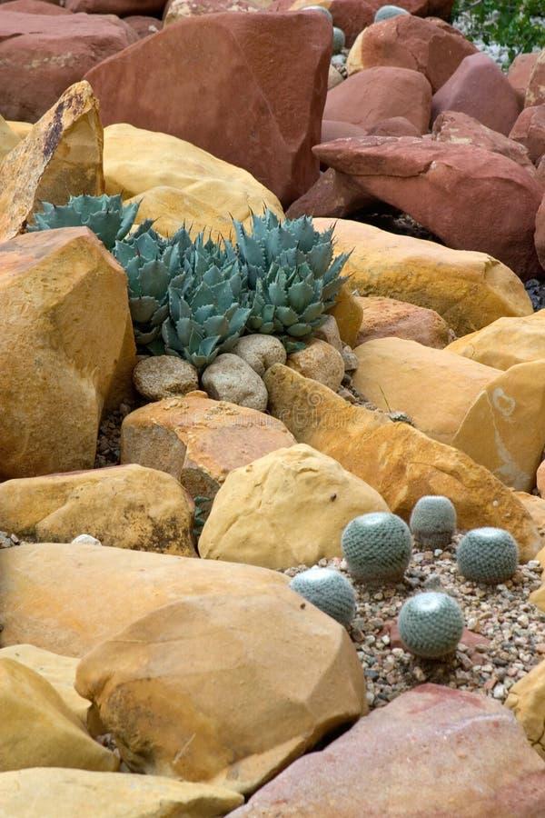 Jardín de roca imágenes de archivo libres de regalías