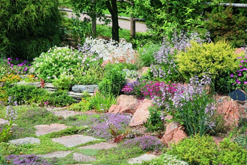 Jardín de roca alpestre fotos de archivo