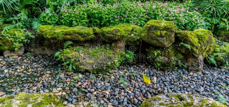 Jardín de roca en el parque fotografía de archivo libre de regalías