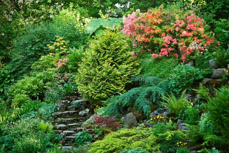 Jardín de rocalla con rododendros fotos de archivo libres de regalías