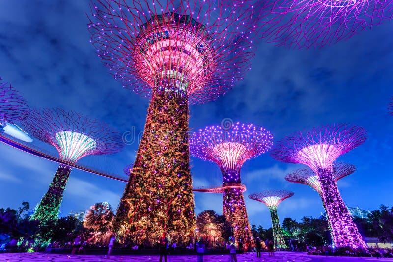 Jardín de Singapur fotografía de archivo libre de regalías
