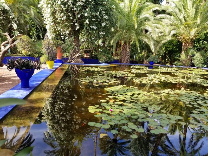 Jardín de Yves StLaurent fotografía de archivo libre de regalías
